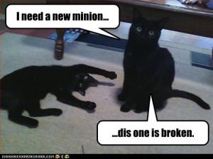 funny-pictures-cat-needs-new-minion