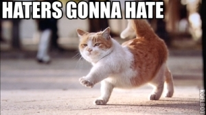 Haters Gonna Hate Cat