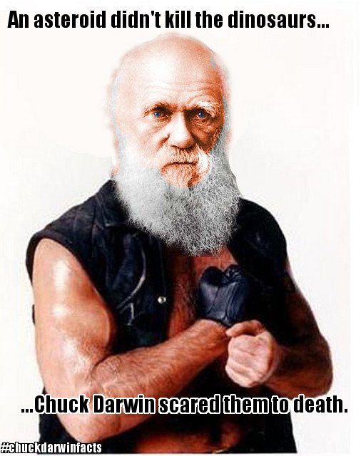 a photoshop of Charles Darwin's head on Chuck Norris' body