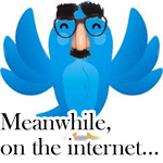 A blue twitter bird wearing a Groucho Marx mask, text says MEANWHILE ON THE INTERNET...