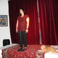 A large Ginger tabby cat lies on the stage staring at the performer (Rebecca de Unamuno)