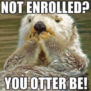 enrolled otter