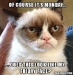 grumpy-cat-of-course-its-monday