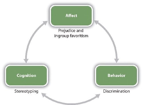 A three-way mutually reinforcing feedback cycle - Affect manifests as Prejudice and Ingroup Favouritism, Behaviour manifests as Discrimination, Cognition manifests as Stereotyping
