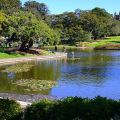 Photograph of Victoria Park pond on a sunny day