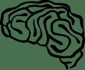 Sketch drawing of brain
